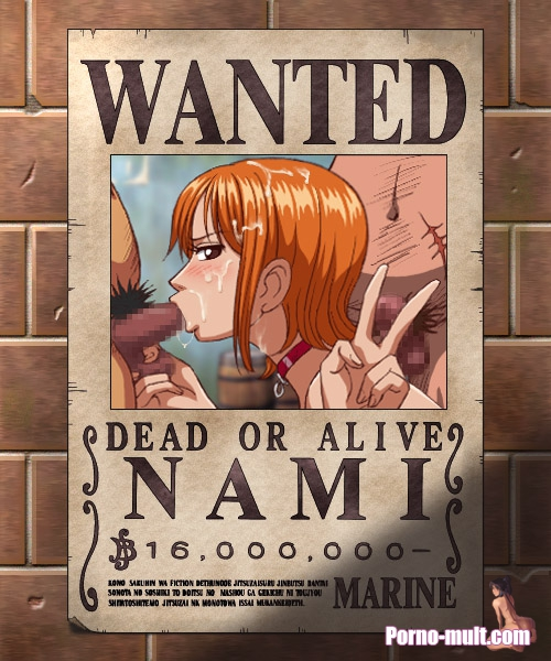 One Piece Hentai